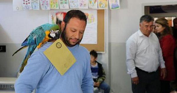 31 Mart seçimlerinden renkli kareler