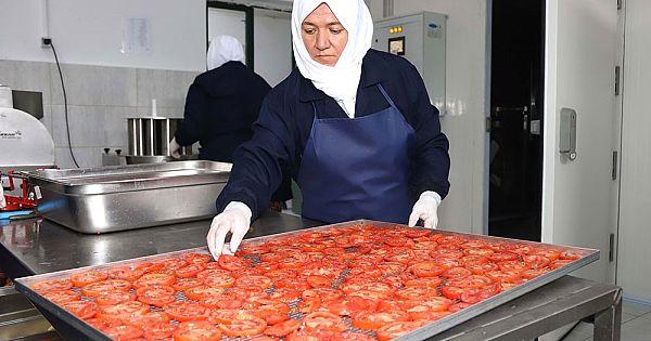 Eskişehir'de meyve sebze üretme tesisi hizmete açıldı