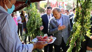 11. Gazipaşa Çekirdeksiz Nar ve Tropikal Meyve Festivali Bugün Başladı